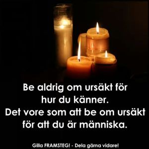 wpid-fb_img_1437850980997.jpg